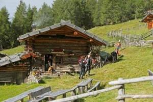 Suedtirol, Ultental, Kaserfeld-Alm, Familie, wandern,
