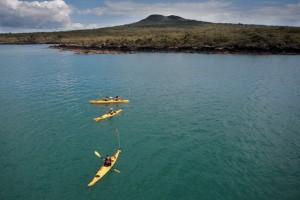 Auckland Sea Kayaks Sonnenuntergang vor Rangitoto Island