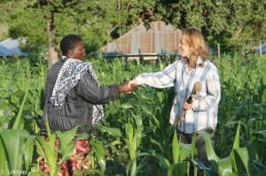 Kenya_Hilfe auf dem Feld