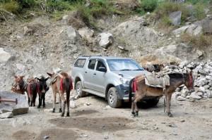 Nepal_Verkehrshindernis