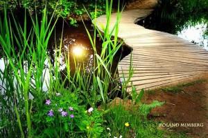 Park Photo4