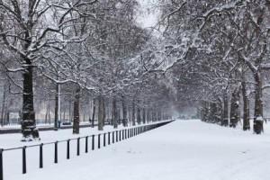 HolidayCheck_The Royal Parks Giles Barnard