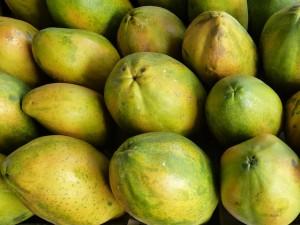 papaya-334461_640