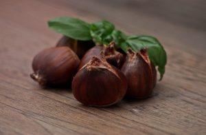 chestnut-998552_640