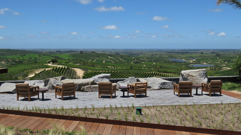 bodega-garzon-terrace-view-_preview